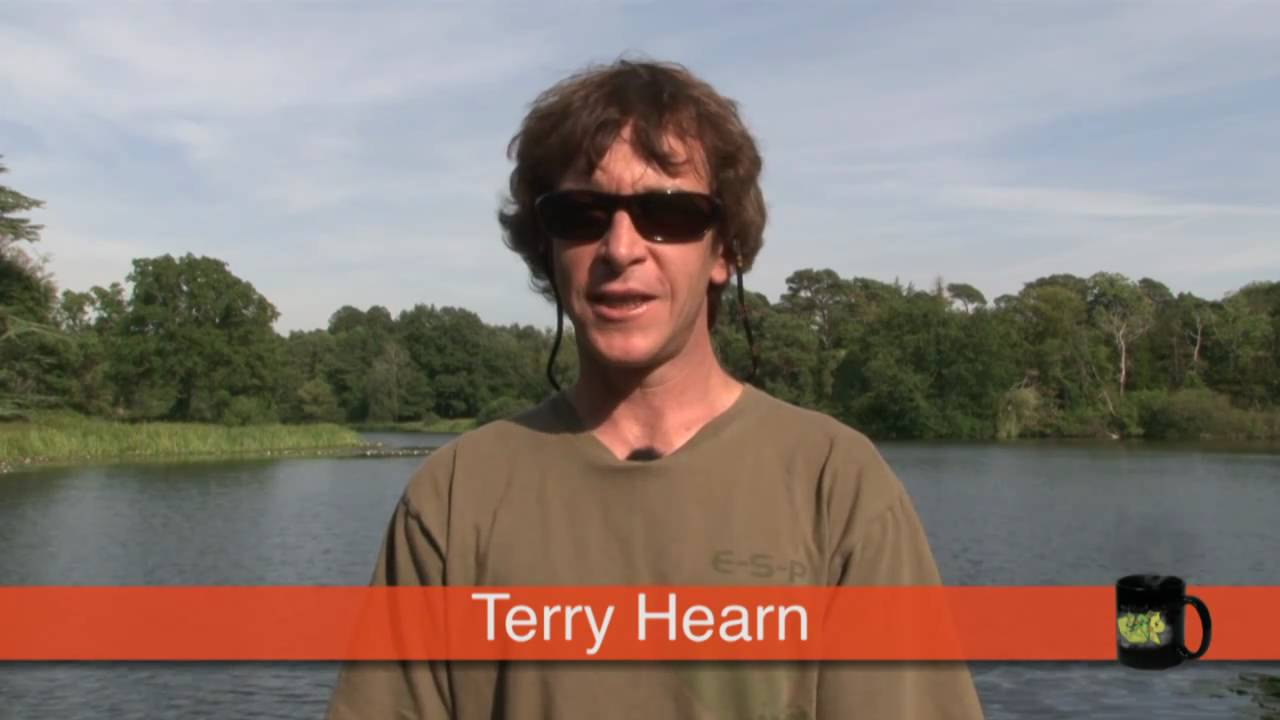 Terry Hearn's Top Tips