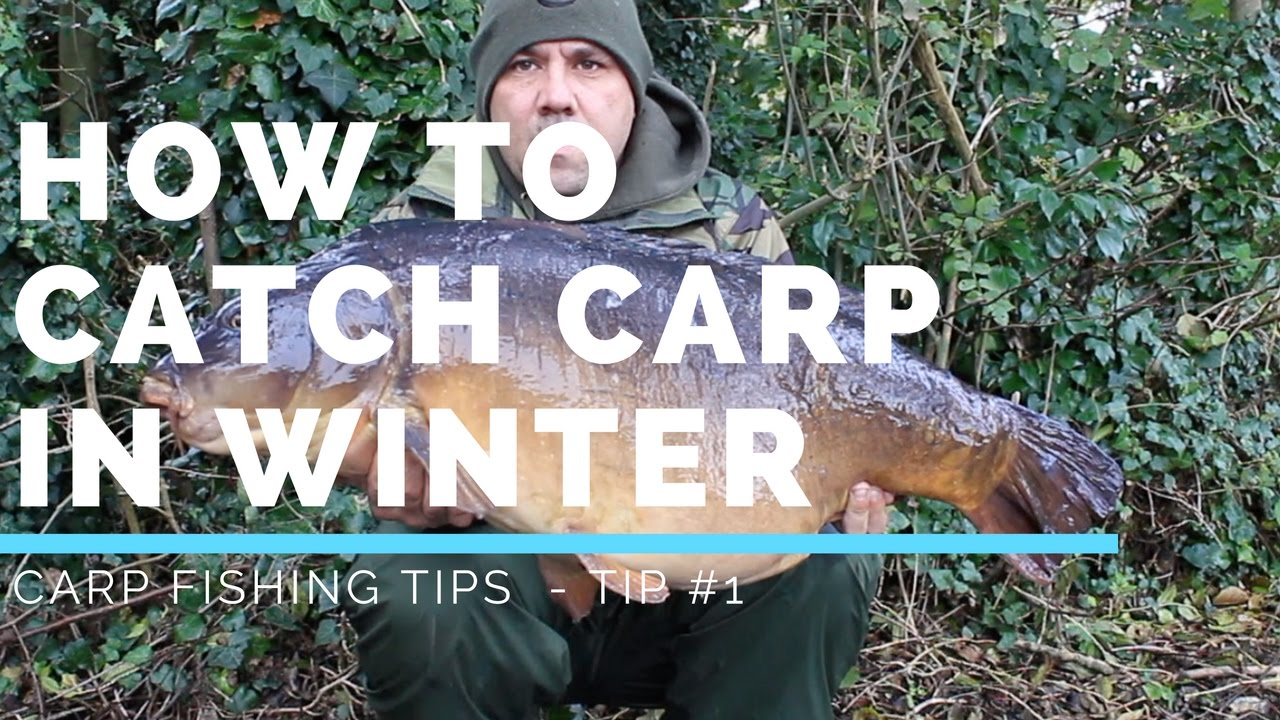 CARP FISHING TIPS – HOW TO CATCH CARP IN WINTER - TIP #1