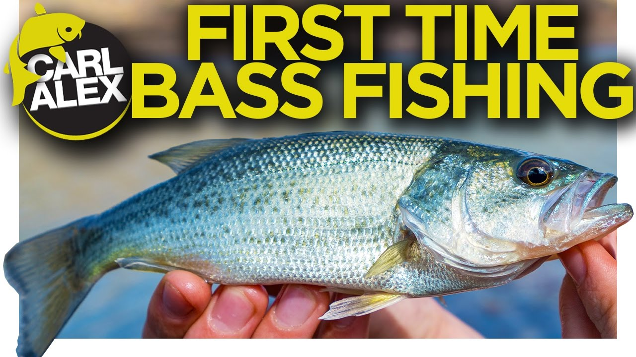 Bass Fishing For The First Time