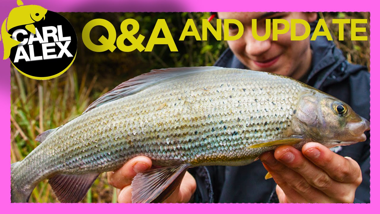 FISHING Q&A and update