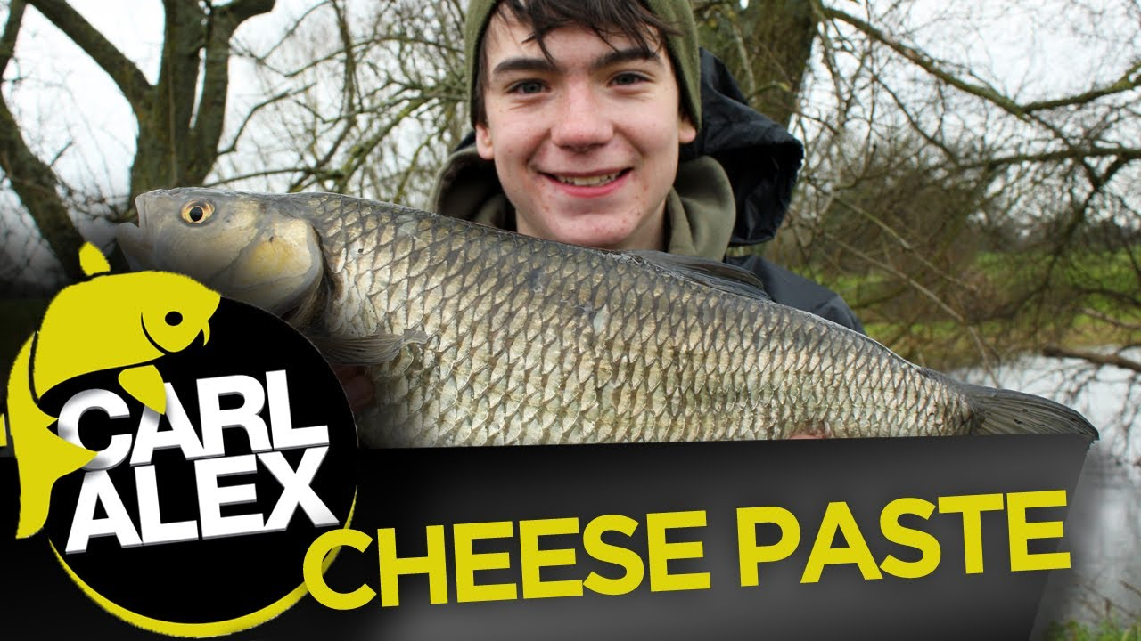 How to make cheese paste for chub fishing