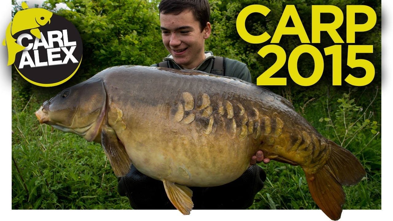 Our Year Of Carp Fishing 2015