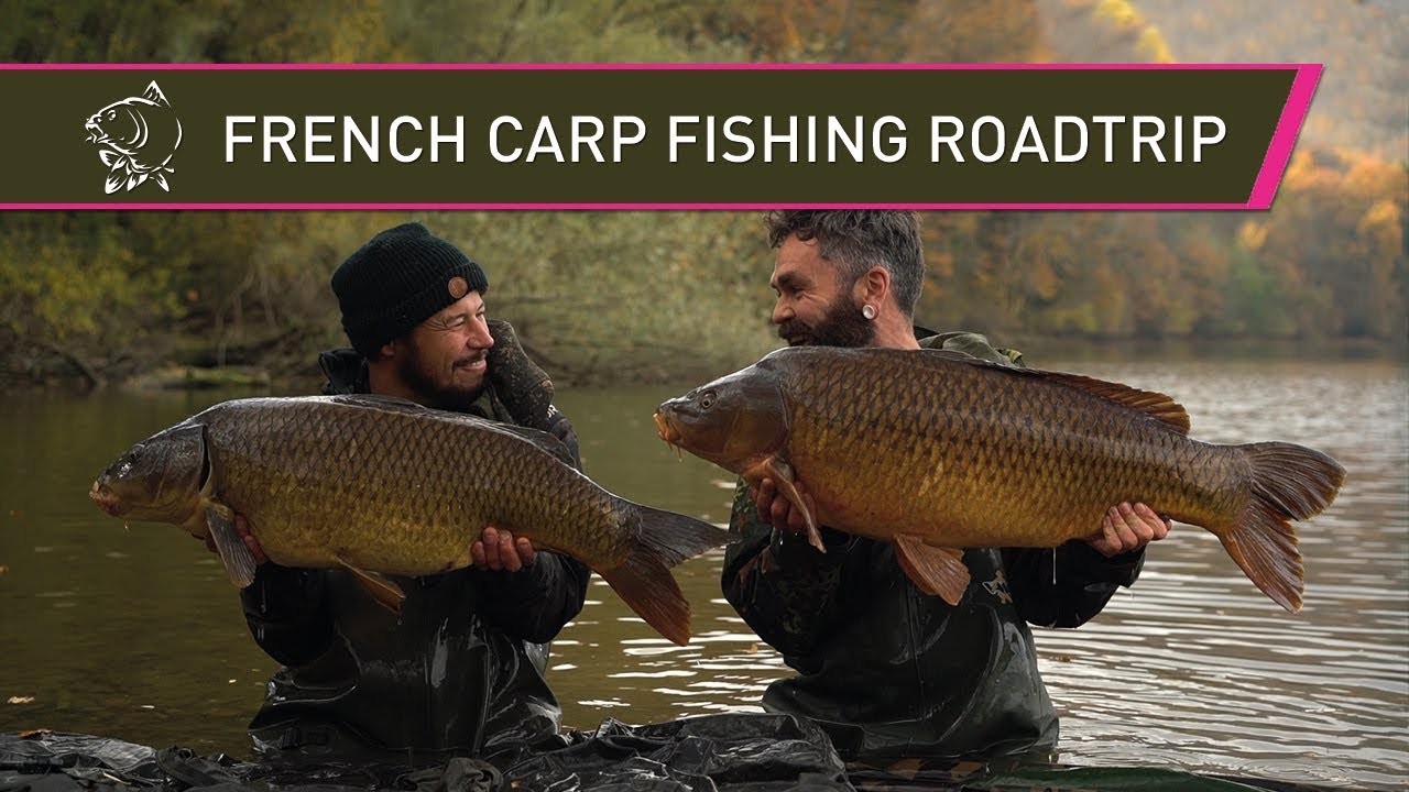 Carp Fishing in France - Carplifer x Subsurface Roadtrip
