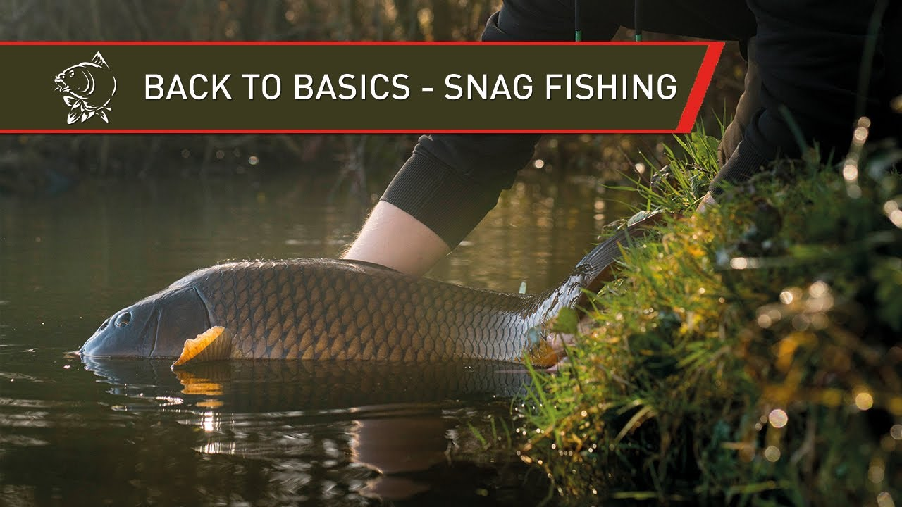 CARP FISHING BACK TO BASICS - SNAG FISHING