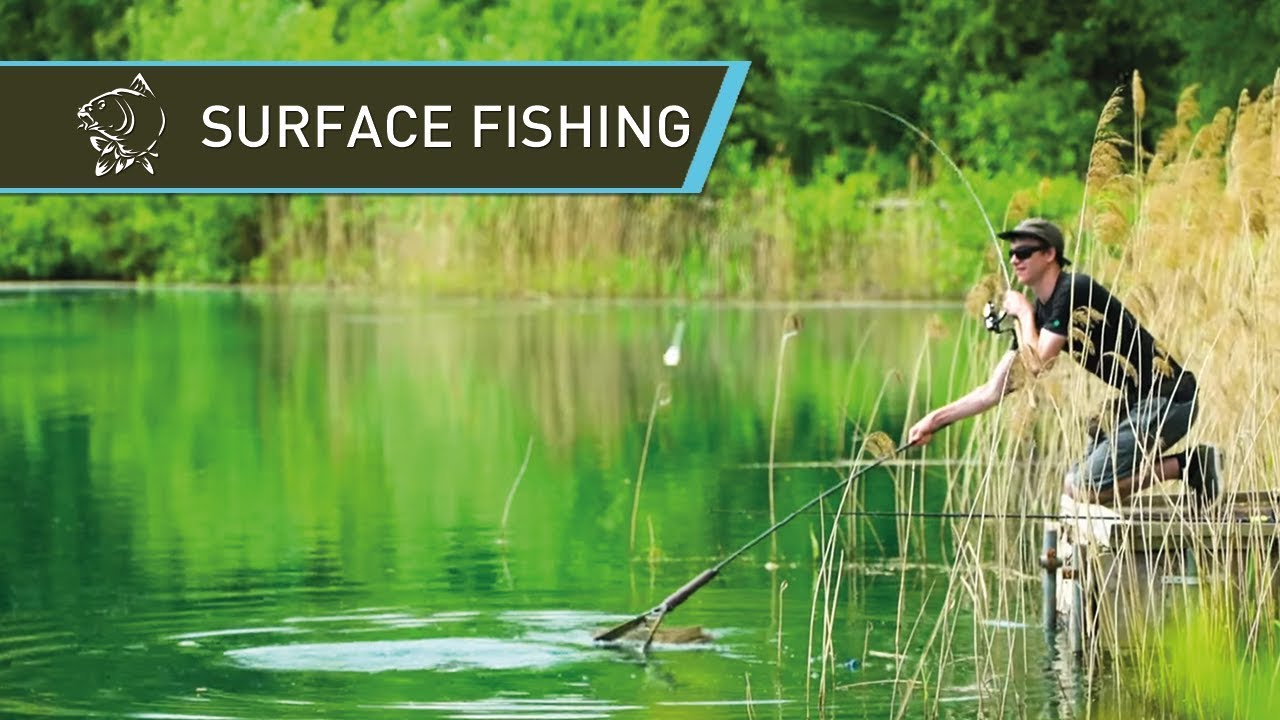 How to catch carp off the surface - Floater Fishing