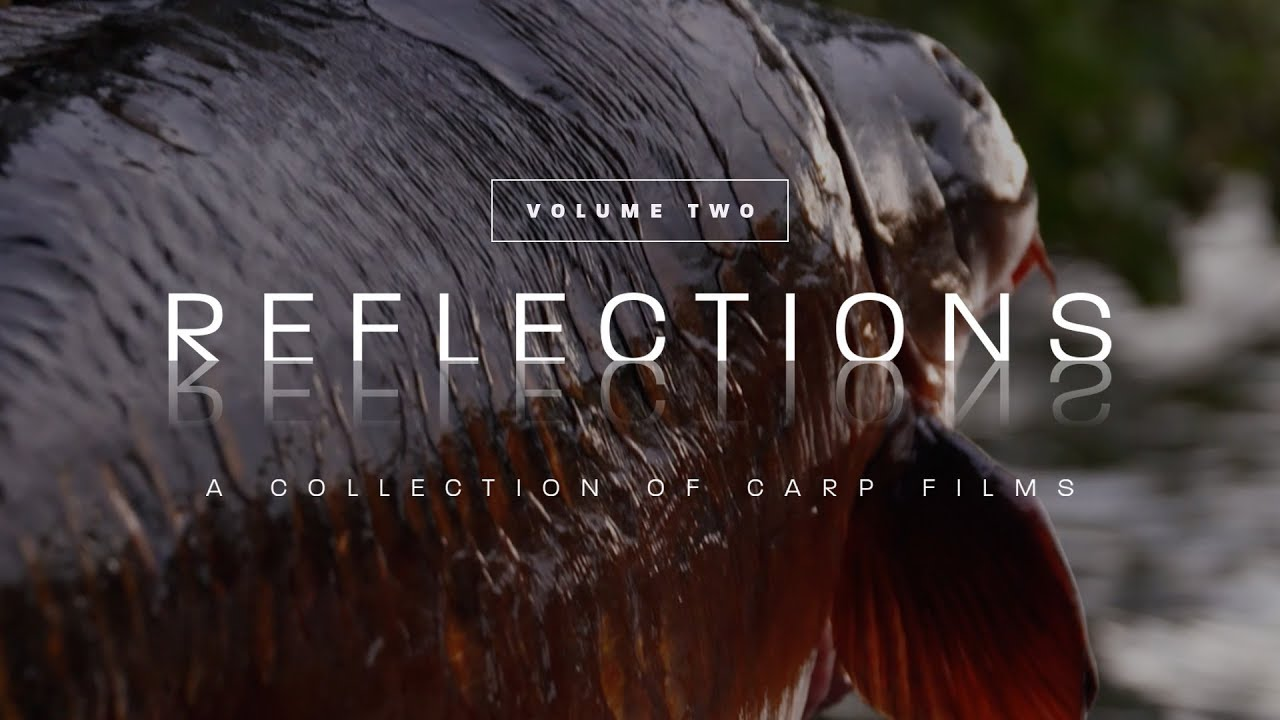 Reflections | Volume Two | OFFICIAL TRAILER