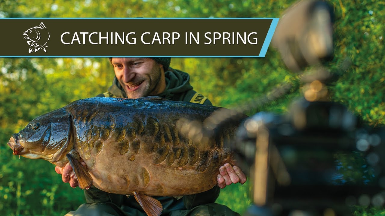 CATCHING CARP IN SPRING - Jimmy Hibbard